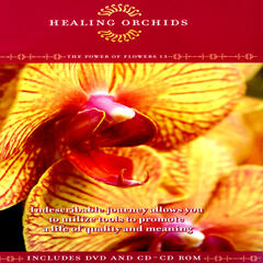 Healing Orchids - The Power Of Flowers 13