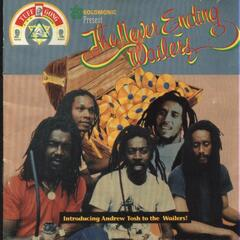The Never Ending Wailers