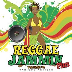 Reggae Jammin Plus, Vol. 2