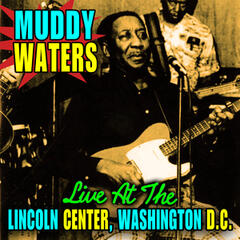 Live At The Lincoln Center, Washinton D.C.