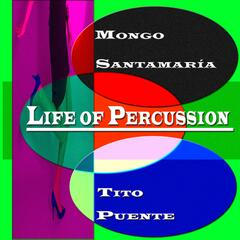 Life of Percussion