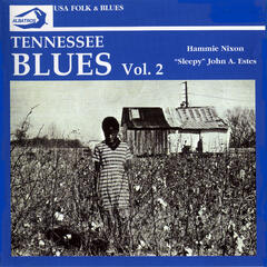Tennessee Blues No. 2