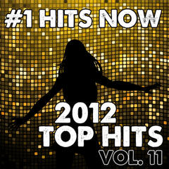 2012 Top Hits, Vol. 11