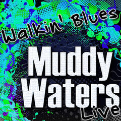 Walkin' Blues (Live)