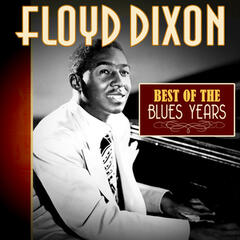 Best of the Blues Years