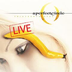 Thirteenth Step - Live