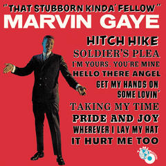 That Stubborn Kinda' Fellow