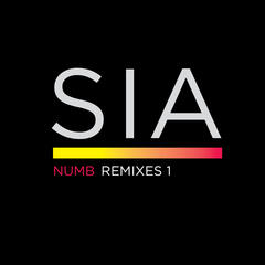 Numb Remixes 1