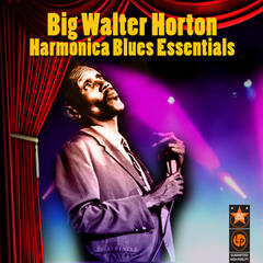 Harmonica Blues Essentials
