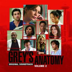 Grey's Anatomy:  Volume 2