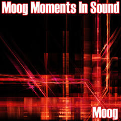Moog Moments In Sound