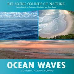 Ocean Waves (Relaxing Sounds of Nature)
