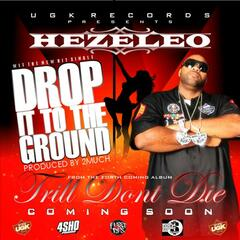 Drop It To The Ground - Single