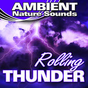 Ambient Nature Sounds Radio