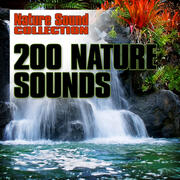 Nature Sound Collection Radio