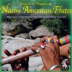 Nature Sounds & Native American Flute for Relaxing Sleep