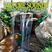 Nature Ambience Radio