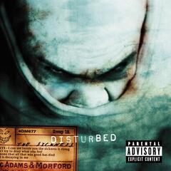 Stupify - Disturbed