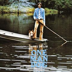 Don't Let Me Be Lonely Tonight - James Taylor