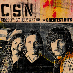 Wasted On The Way by Crosby, Stills & Nash