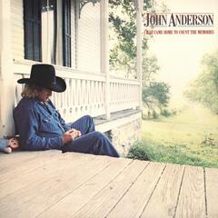 Would You Catch A Falling Star - John Anderson