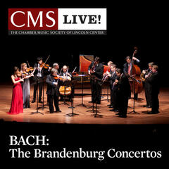 Brandenburg Concerto No. 6 in B-flat major, BWV 1051: I. [Allegro]