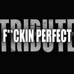 F**kin' Perfect (Pink Tribute)