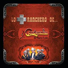 Belleza De Cantina by Los Cardenales de Nuevo Leon