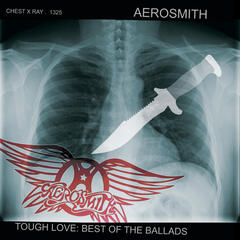 Love In An Elevator - Aerosmith