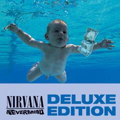 On A Plain - Nirvana