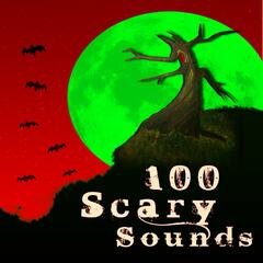Scary Sounds Banging Big Door - Sound Effect