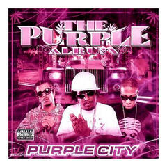 Purple City And The Lot
