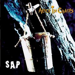 Got Me Wrong (Album Version) - Alice in Chains
