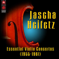Violin Concerto in D Major, Op. 77 - II. Adagio