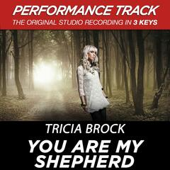 You Are My Shepherd (Medium Key Performance Track With Background Vocals)