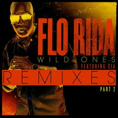 Wild Ones (feat. Sia) (Dave Winnel's Godspeed Mix)