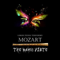 Die Zauberflote (The Magic Flute), K. 620 (arr. for 2 flutes): Act II: Arie: Der Holle Rache kocht in meinem Herzen