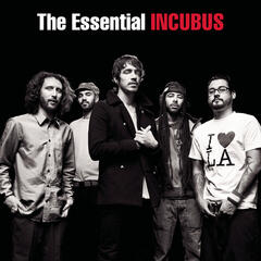 Are You In? - Incubus