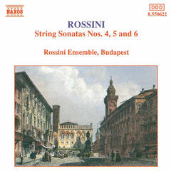 Sonata for Strings No. 4 in B flat major | I. Allegro vivace [Rossini]