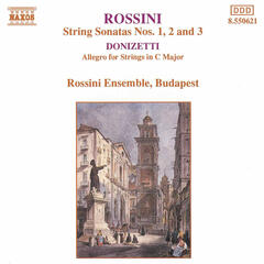 Sonata for Strings No. 2 in A major | Andante [Rossini]