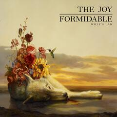 This Ladder Is Ours - The Joy Formidable
