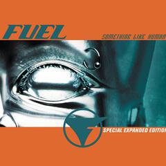 Hemorrhage (In My Hands) (Album Version) by Fuel