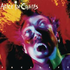 Man In The Box (Album Version) - Alice in Chains