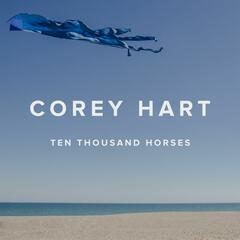 Ten Thousand Horses (feat. Jane Siberry) [Guitar version]