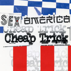 The Flame (Album Version) - Cheap Trick