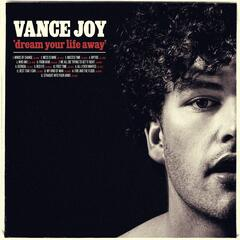 Fire and the Flood - Vance Joy