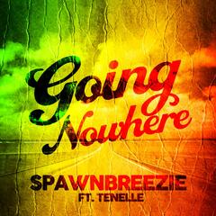 Going Nowhere (feat. Tenelle) - Spawnbreezie