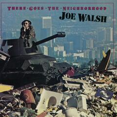 A Life Of Illusion - Joe Walsh