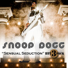 Sensual Seduction - Snoop Dogg