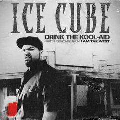 Drink The Kool-Aid (explicit)